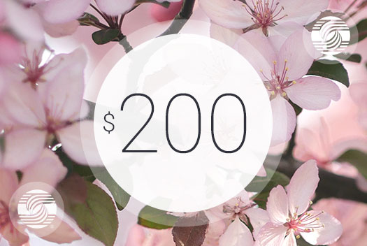 Gift Certificate – $200