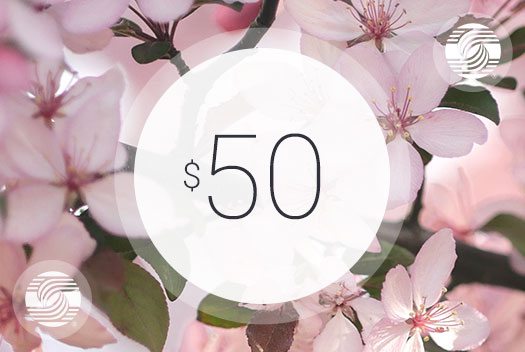 Gift Certificate – $50